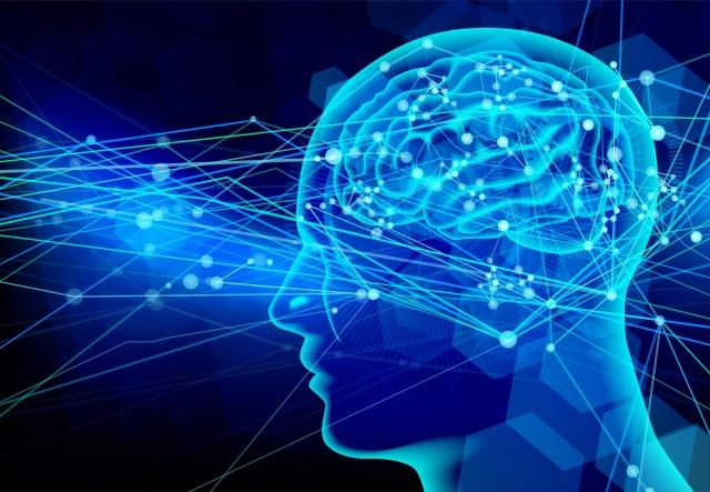 脳の特性から見る「アタリマエ」は何故認識しないのか?